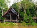 malajsie_borneo_kinabatangan_10