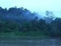 malajsie_borneo_kinabatangan_4