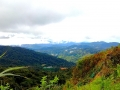 malajsie_cameron_highland_6