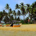 Šrí lanka, Trincomalee – Turisticky klidnější pláže s havrany a dobytkem 5. část